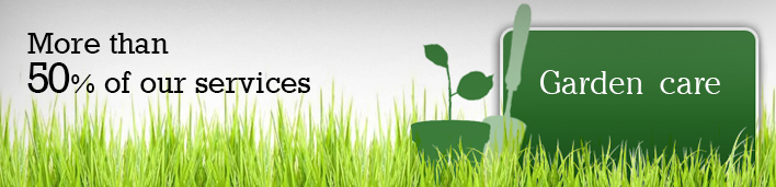 Garden care lawn mowing cleaning service sydney for Garden cleaning services